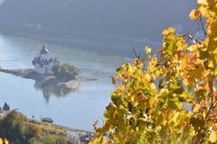 Cidade de Kaub com folhas da uva Imagem de Stock Royalty Free