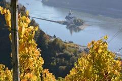 Cidade de Kaub com folhas da uva Imagens de Stock