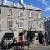 Cidade de Quebec, Quebeque - 12 de outubro de 2013: Caleche ou um cavalo-dracma imagens de stock royalty free