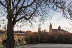 Cidade de Salamanca, Espanha Foto de Stock Royalty Free