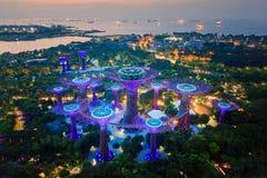 Cidade de Singapura - 30 de julho de 2018 bosque de Supertree Jardim foto de stock royalty free