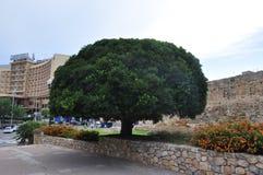 Cidade de Tarragona Imagem de Stock Royalty Free
