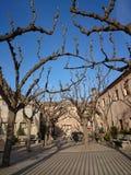 Cidade de Tarrega, Espanha imagens de stock