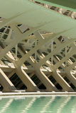 Cidade de Valência da ciência e da arte: Construções futuristas com sua reflexão na água 01 Imagem de Stock Royalty Free