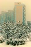 Cidade do inverno fotos de stock royalty free
