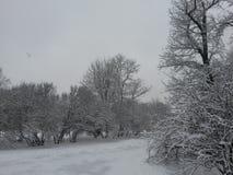 A cidade do inverno Foto de Stock