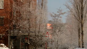 A cidade do inverno dirige o ramo filme