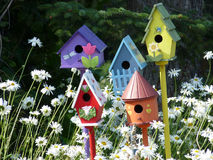 Cidade do pássaro Imagem de Stock