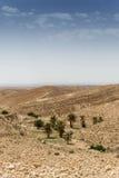 Cidade dos oásis de Tunísia Fotos de Stock Royalty Free
