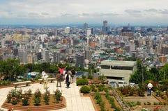 Cidade e natureza grandes Imagens de Stock Royalty Free