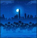 Cidade e palmeiras na noite Foto de Stock