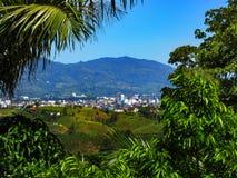 A cidade grande e a melhor cidade Pereira fotos de stock royalty free