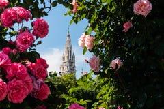 Cidade Hall Vienna na mola Imagens de Stock