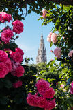 Cidade Hall Vienna na mola Imagens de Stock Royalty Free