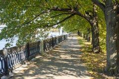 Cidade a região de Moscou, árvores bonitas do parque A terraplenagem de Taras Shevchenko imagem de stock