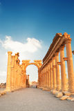 Cidade romana antiga do tempo no Palmyra, Syria. Fotos de Stock Royalty Free
