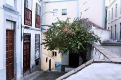 Cidade Santa Cruz de La Palma foto de stock royalty free