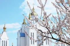 Cidade velha de Chernigov fotografia de stock