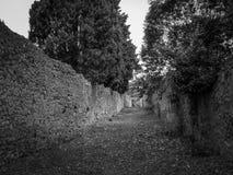 A cidade velha de Pompeii fotos de stock