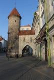 Cidade velha em Tallinn Foto de Stock Royalty Free