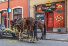 A cidade velha Krakow, Polônia imagens de stock