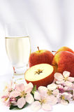 Cider and apple - still life. Cider, apples, apple blossoms - still life Stock Image