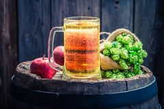 Cider beer with apples, hops and wheat Stock Photos
