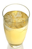 Cider en ijs royalty-vrije stock fotografie
