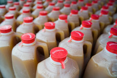 Cider  Half Gallons at Market Royalty Free Stock Photos