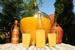 Cider - i trädgården fotografering för bildbyråer
