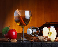 Cider still life. With spices Stock Images