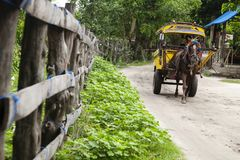 Cidomo i gilitrawangan Royaltyfri Fotografi