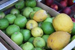 Cidras y limones Foto de archivo libre de regalías