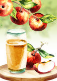 Cidre d'Apple Illustration d'aquarelle Image stock