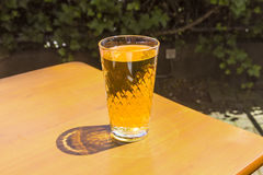 Cidre glasses standing on Royalty Free Stock Images