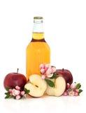 Cidre, pommes et fleur de fleur Photographie stock libre de droits