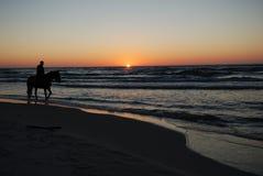 Cień koń na plaży przy zmierzchem Obrazy Royalty Free