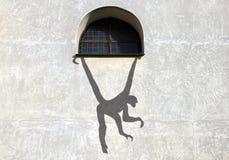Cień na ściennej małpie Obrazy Royalty Free