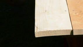 Cieśla rżnięta drewniana deska z elektrycznym saw zbiory