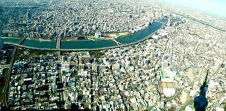 Cień drzewo Tokyo i ptasiego oka widok miasto drapacz chmur Obraz Royalty Free