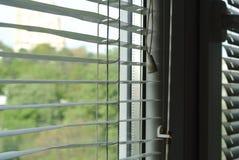 Ciechi bianchi su una finestra immagine stock libera da diritti
