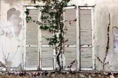Ciechi di finestra dilapidati bianchi di legno alti chiusi montati sulla parete incrinata della costruzione abbandonata dell'hote fotografia stock libera da diritti
