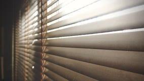 Ciechi di legno del primo piano Luce solare attraverso le finestre al salone Fuoco selettivo e contesto leggero di immagine immagine stock
