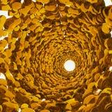ciecza brązowy tunel Fotografia Royalty Free