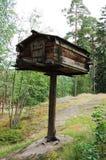 ciekawa buda Lapland Zdjęcie Royalty Free