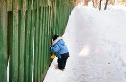 Ciekawa chłopiec patrzeje przez ogrodzenia Fotografia Royalty Free