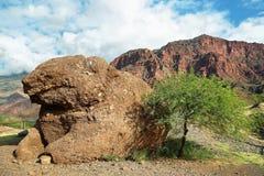 Ciekawa formacja Quebrada De Las Conchas, Argentyna Fotografia Royalty Free