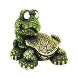 Ciekawski Mocny żółwia Paperweight Fotografia Stock
