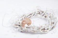 Ciekawy beżowy myszy obsiadanie w wianku gałązki Obraz Stock