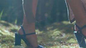 Cieki modelują dla reklamować eleganckich kobiety ` s buty zbiory